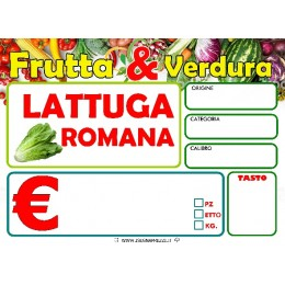 LATTUGA ROMANA